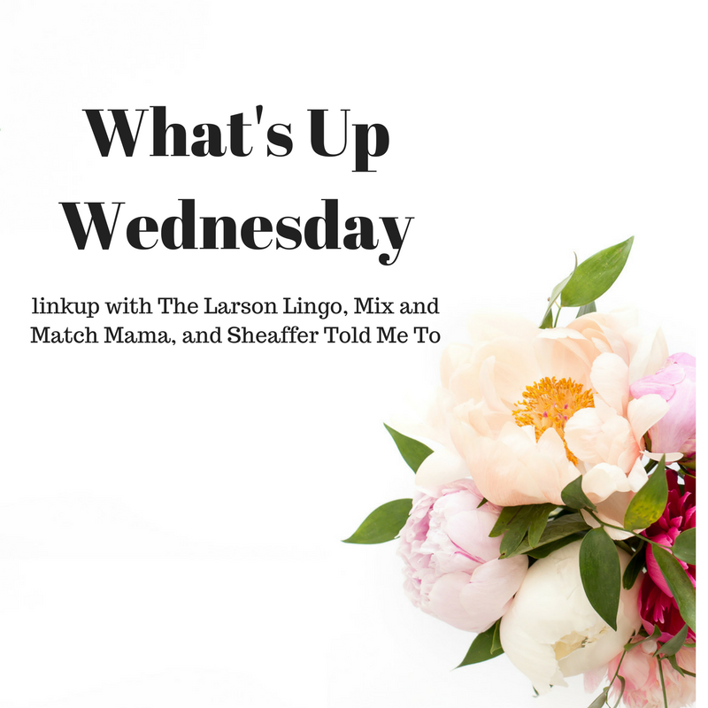 What's Up Wednesday – March 2018